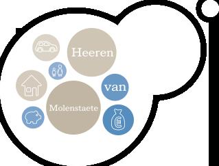 Logo Heeren van Molenstaete